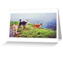 A Dog Study (please see description) Greeting Card