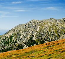 Tatra Mountains national park by Dfilyagin