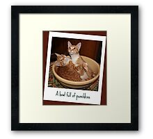 A Bowl Full of Punchkins Framed Print