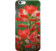 Indian Paintbrush - iPhone Case iPhone Case/Skin