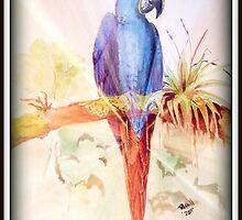 Hyacinth macaw by buddybetsy