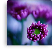 Colour Of Life XXXIV [Print & iPad Case] Canvas Print