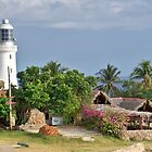 Cuban Lighthouse by Lynn Bolt