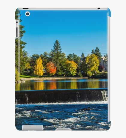 Falls of Pioneer Park iPad Case/Skin
