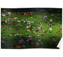 Fall Leaves Floating On Swamp Poster