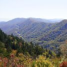 Fall in The Smokeys by Laurie Perry