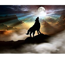 THE CANYON WOLF HOWLING AT THE FULL MOON Photographic Print