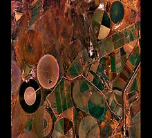 """""""Circles On Earth"""" - phone by Michelle Lee Willsmore"""