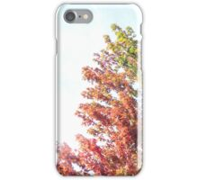 Fall Tree iPhone Case iPhone Case/Skin