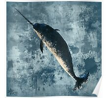 Jackson the Narwhal Poster