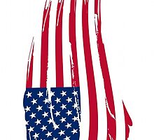 Large USA flag case by Lee Eyre
