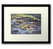 Fall 4 Fall Framed Print