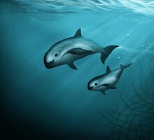 Treacherous Waters - Vaquita Porpoise by Amber Marine