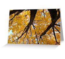 Yellow Autumn Trees prints Golden Fall Leaves Greeting Card