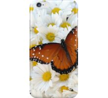 Butterfly on Daisies - iPhone Case iPhone Case/Skin