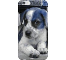 Blue Puppy iPhone Case/Skin
