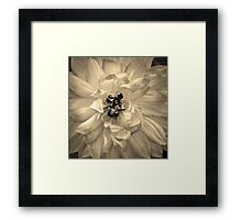 Honey Bees Framed Print