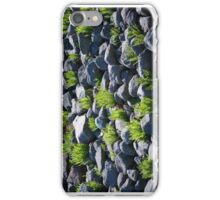 Boulders and Plants iPhone Case/Skin