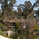 Cowra Japanese gardens {3} (iPhone case) by CapturedByKylie