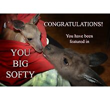 Feature Banner For 'You Big Softy' Photographic Print