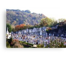 Cemetery in Vienne, France Canvas Print
