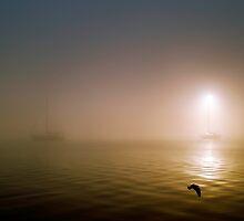 Misty 2 by Elisabeth Dubois