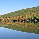 Shores of Quaker Lake by Jill Vadala