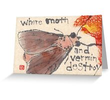 Moth in the Sweater Drawer Greeting Card