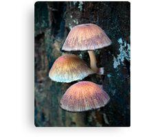Mushroom Villa Canvas Print