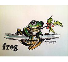 Christmas frog. Elizabeth Moore Golding© Photographic Print