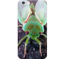 Green Grocer  iPhone Case/Skin