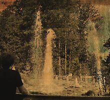 Wathing the Geyser 2 by lroof