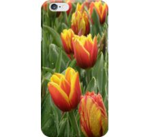 Dainty Tulips (iPhone case) iPhone Case/Skin