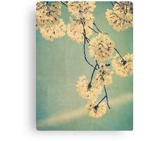 Cherry Bee Canvas Print