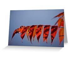Autumn Sumac Over the Lake Greeting Card