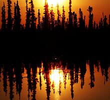 Sunrise Over the Taiga by May-Le Ng