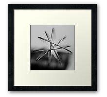 Wisk Framed Print