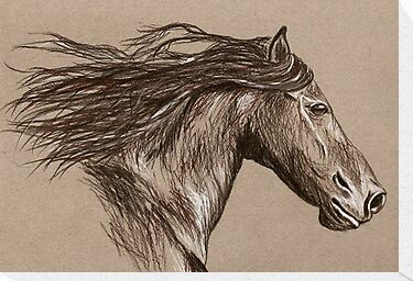 Stallion by Kelly Gatchell Hartley