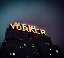 New Yorker Nights by Kaitlyn Mikayla