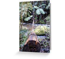 Nature Logging Greeting Card