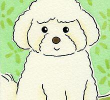 Bichon Frise Dog by zoel
