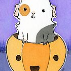 Guinea-pig in a Pumpkin Head by zoel