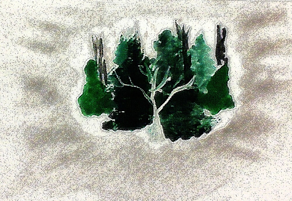 Collection of trees for Christmas, waterclor by Anna  Lewis