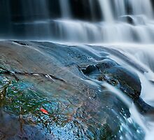 Red Leaf Cascades by Michael Howard