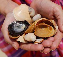 Woman holding shells by Sami Sarkis