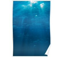 Light penetrating water surface Poster
