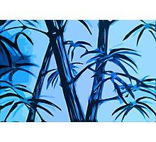 blue geometric bamboo Photographic Print