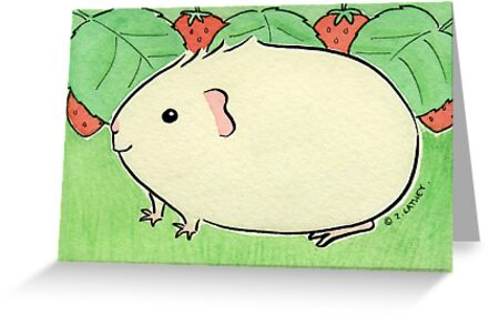 Cream Guinea-pig with Strawberries by Zoe Lathey