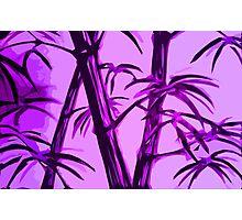 pink geometric bamboo Photographic Print