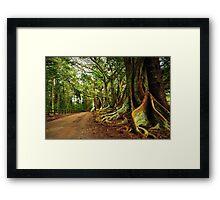 New Farm Road - Norfolk Island Framed Print